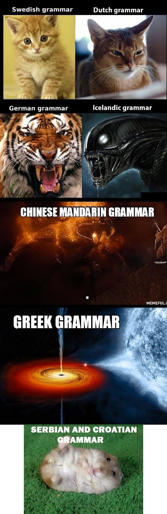 e390064688f8ef288757818e571e8246 french grammar english grammar 143 best languages are awesome images on pinterest funny stuff,German Word Meme