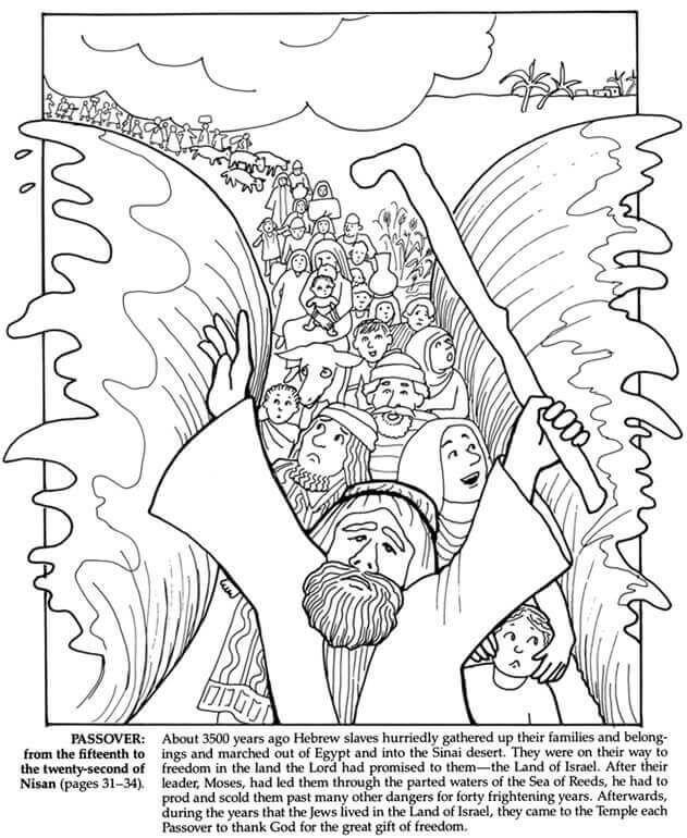 Free Printable Passover Coloring Pages Pesach Coloring Di 2020 Alkitab Pendidikan Anak Usia Dini Sekolah Minggu