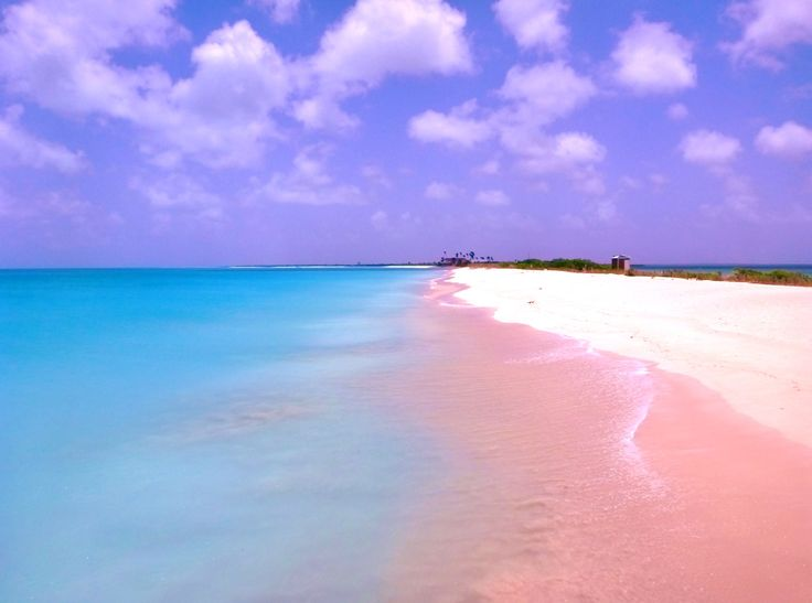 Barbuda pink sand beach yans ma pinterest beautiful for Pink sand in the bahamas