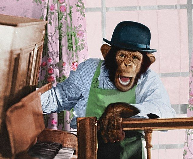 The 'Mr Shifter' character from the 1970s PG Tips advert...