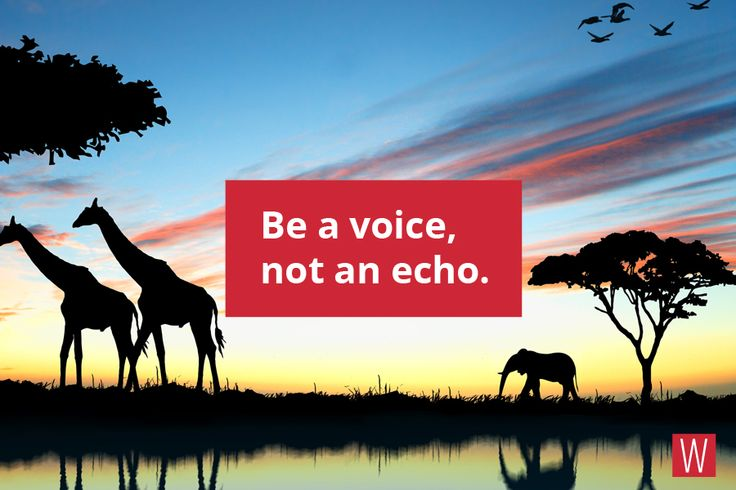 Be a voice, not an echo. #quote #lifestyle #motivation #life #creativity