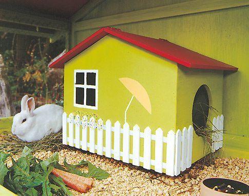 Viel Platz fürs Kleintier: Diesen Kaninchenstall kannst du selbst bauen. Wir zeigen dir, wie es geht.