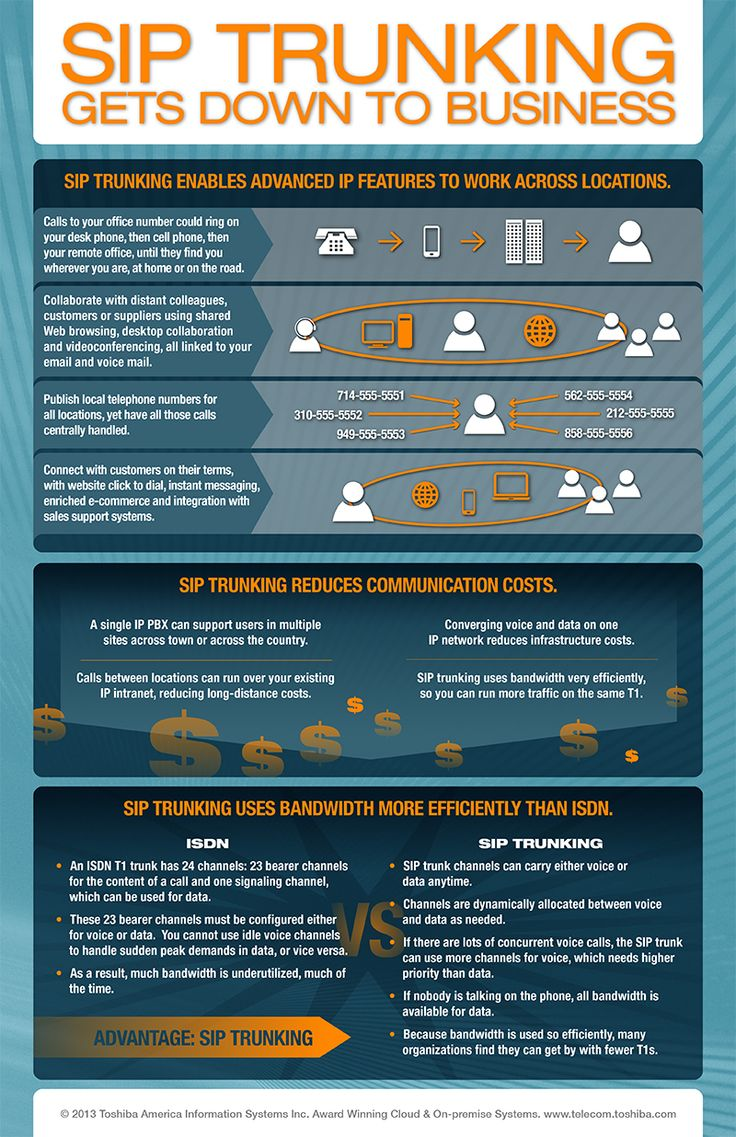 SIP Trunking Gets Down to Business Infographic