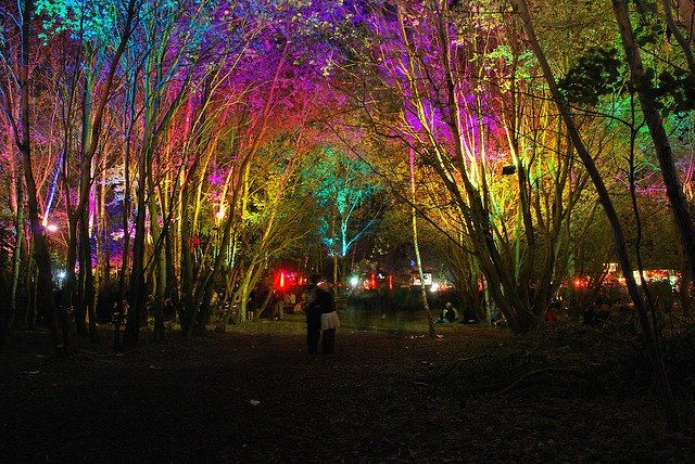Fusion Festival 2014