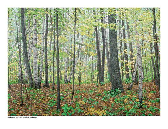 2015 Landscape Calendar | The Art Map Parkland by David Marshak - June