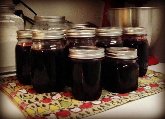 Dewberry Jelly—from Vine to Jar