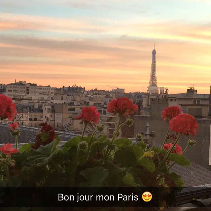 Beautiful Paris from my room.   #paris #romantic #Love #Romantic #Beautiful #Travel #Tourist #Sunset#EiffelTower #Sky #Colorful #City #Europe #Urban #Architecture #Flowers#