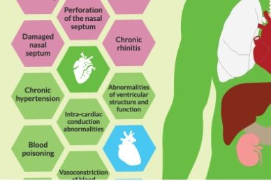Long term effects of cocaine on the body (INFOGRAPHIC) | Addiction Blog