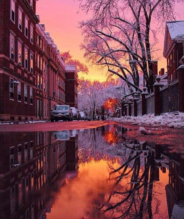 Beautiful Shot From Harvard University Boston