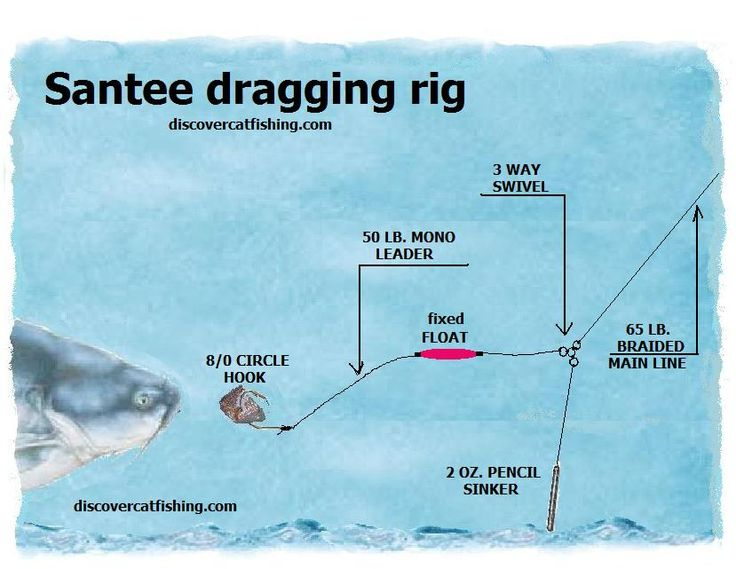 catfish rigs | The Santee drift rig is a catfish fishing rig that is gaining ...