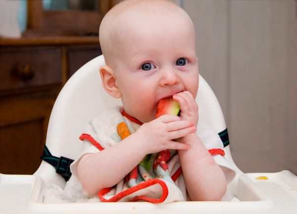 Introducing Solids What Simply Works For Us