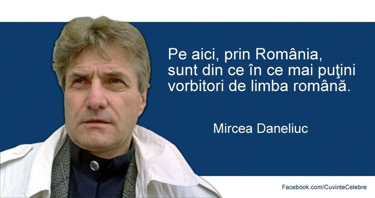Imagine similară
