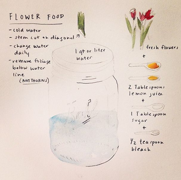 flower food diy
