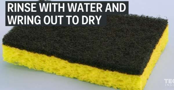 Check Out This Superb Way To Really Clean Your Disgusting Kitchen Unique Kitchen Sponge Decorating Inspiration