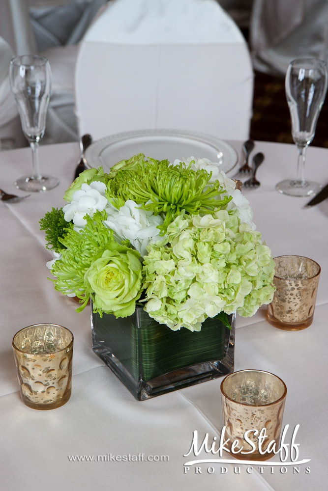 Best green hydrangea ideas on pinterest annabelle