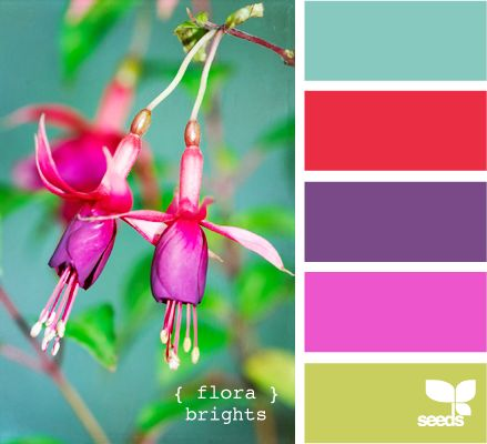 how to choose a paint color for your bedroom best 25 tropical colors ideas on pantone 21320