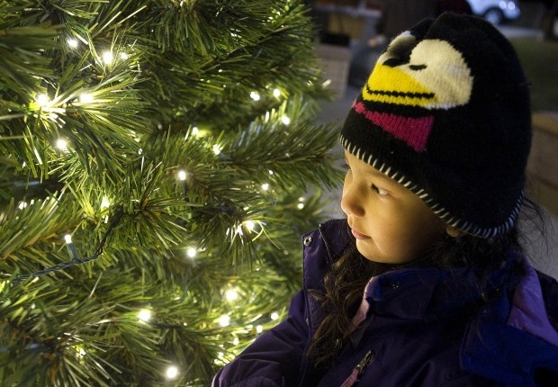 Zeah Woodruff, 4, gets a closer look at the lights on the Pueblo Community College Christmas tree following a lighting ceremony. Mariachi musicians accompanied the lighting ceremony of the 18-foot tree outside the Student Center on campus. (Chieftain photo by Chris McLean)