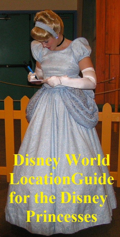 Want to know where to find the Disney Princesses at Disney World?  Click this pin for an easy a list of princess locations.  #DisneyPrincesses