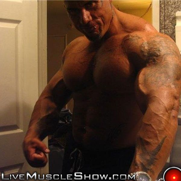 gay muscle webcam