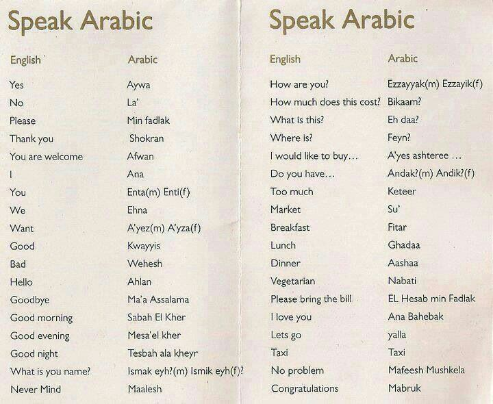 Speak Arabic                                                                                                                                                                                 More