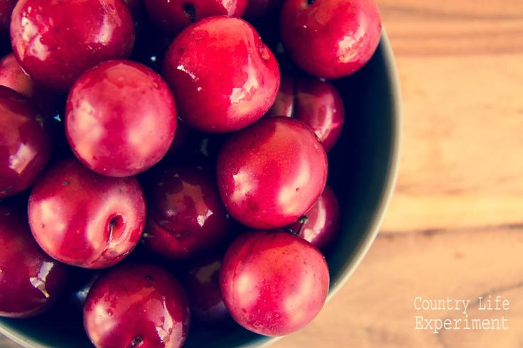A delicious, easy recipe to make your own plum paste. Perfect to serve with a cheese platter.