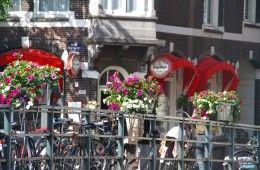 Sunny Amsterdam Bridge