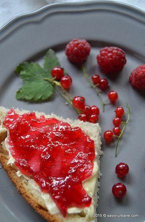 Jeleu de coacaze rosii cu zmeura peltea Savori Urbane (4)