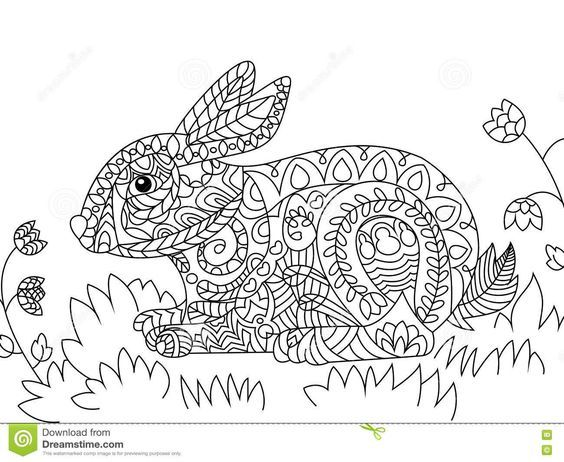 233 best coloring rabbit images on Pinterest | Adult coloring ...