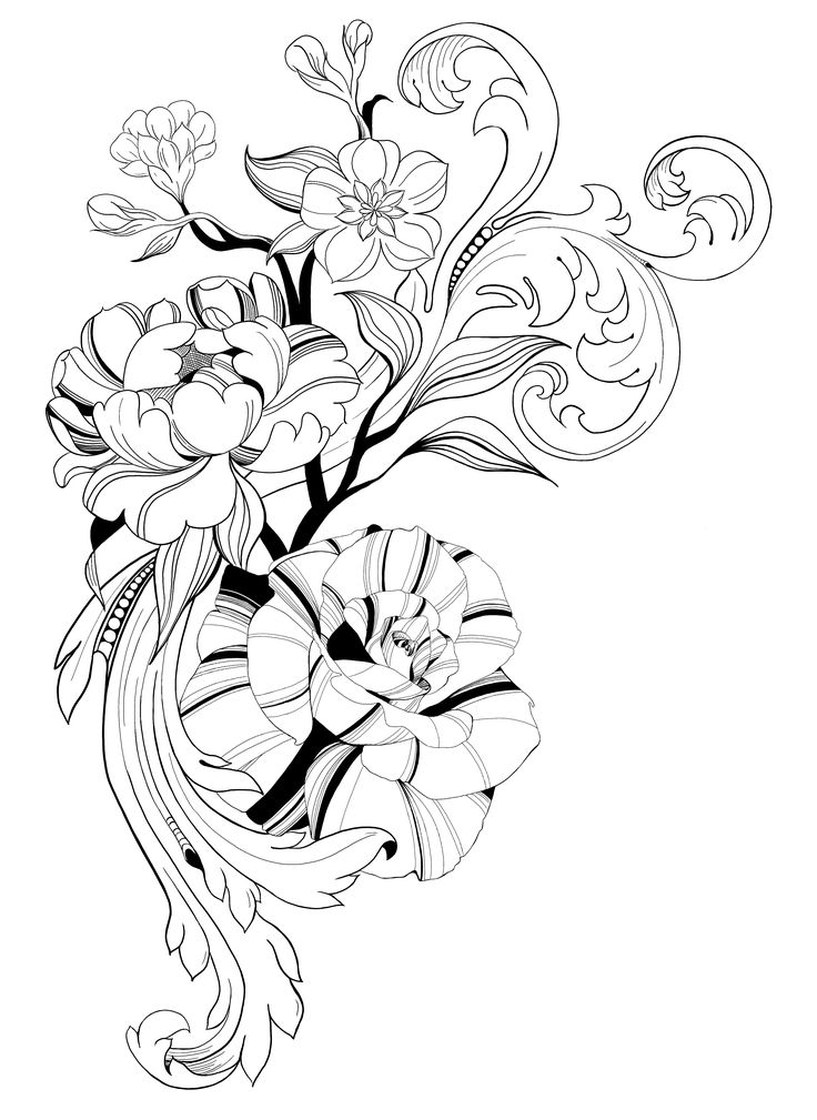 line work flower drawing  drawing  flower  drawings