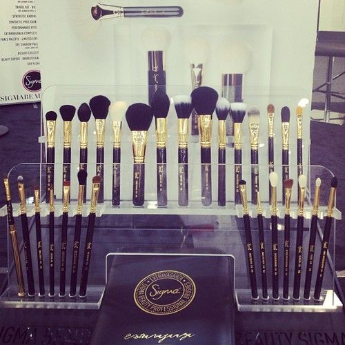Sigma makeup brushes. Widely recognized as the best brushes in their price range. As good (some are better) than high-end cosmetics brand brushes.