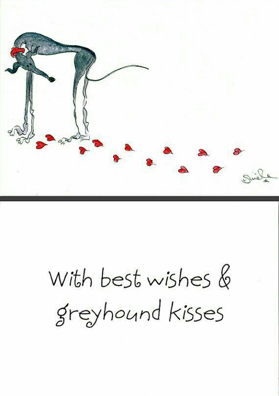 Best wishes & Greyhound kisses
