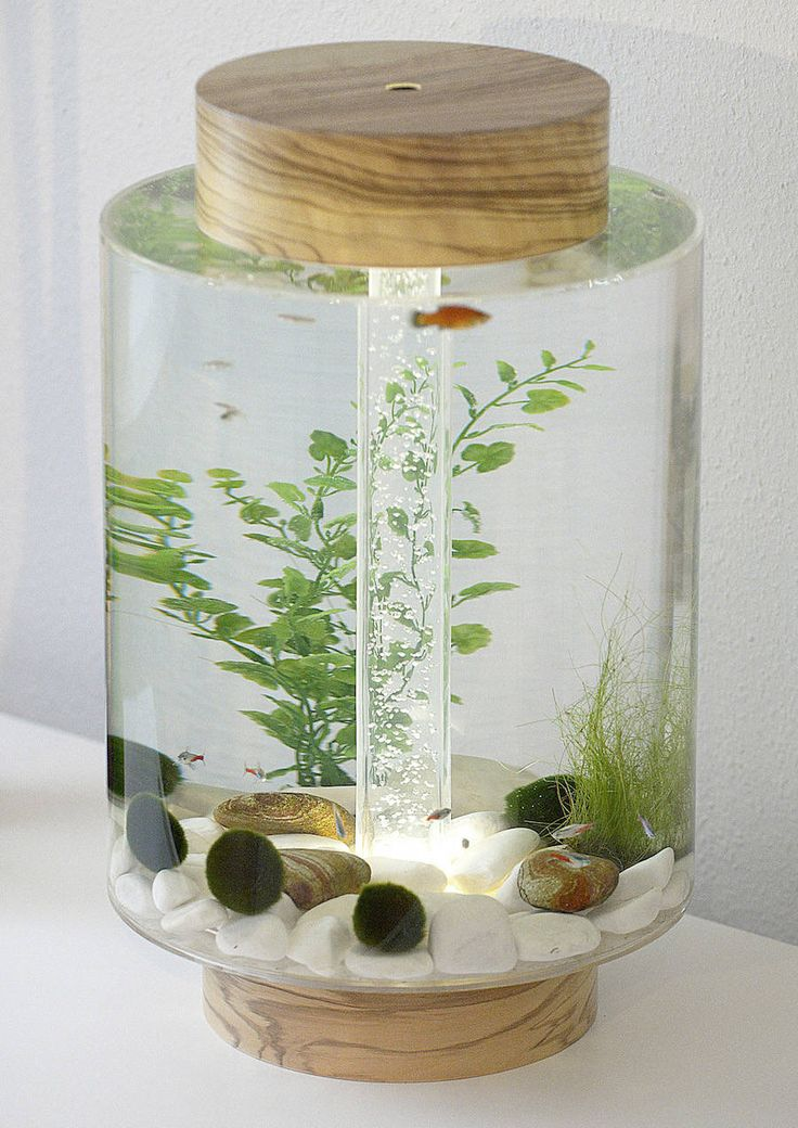 'Norom'- A Minimalist Cylindrical-Shaped Aquarium by Charles Törnros
