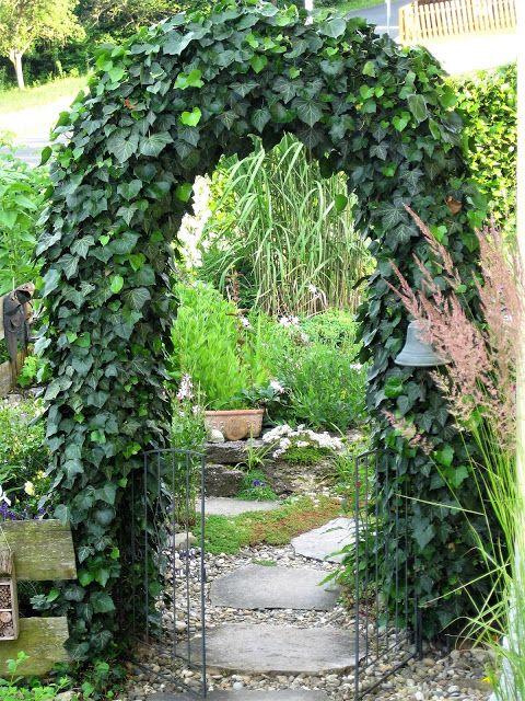 Unser Gartenpavillon mit Efeu in 2020 (mit Bildern