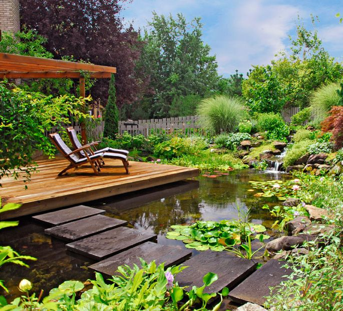 Backyard Water Garden