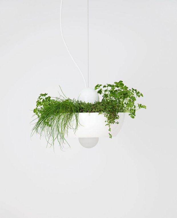 Product photo | Well Light - Planter