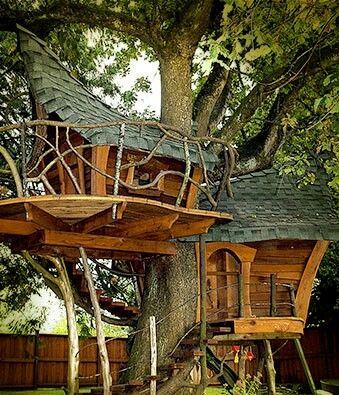 Whimsical tree house.