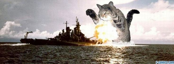 cat vs battleship facebook cover