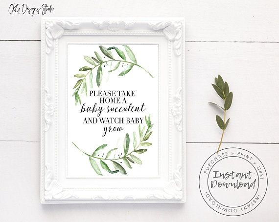 Baby shower Succulent Greenery and black Baby Succulent Signs Editable Sign Baby Shower Sign Package Bundle Baby Shower Sign Set
