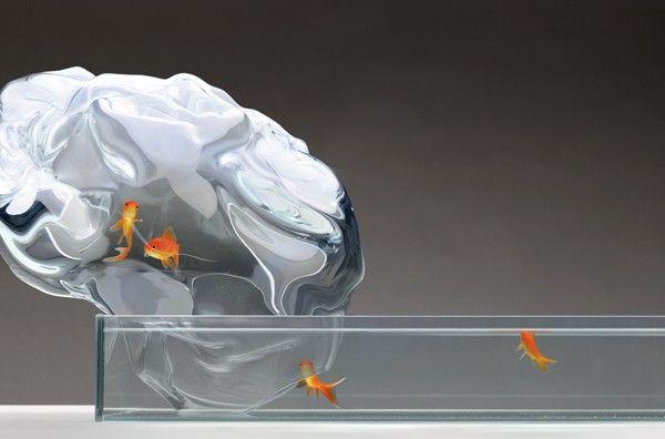 Sébastien Cordoleani est un jeune designer français diplômé de l'Ensci en 2004. Depuis 2010 il est à la tête de son propre studio de design, basé à Aix en Provence.  Je vous présente aujourd'hui son remarquable aquarium baptisé « Echappée » composé d'un bassin auquel est apposé une voie d'eau s'élevant dans l'espace, au delà des limites habituelles de l'aquarium. La bulle est l'élément central, un défi technique pour le souffleur de verre qui la réalise par soufflage et aspiration…