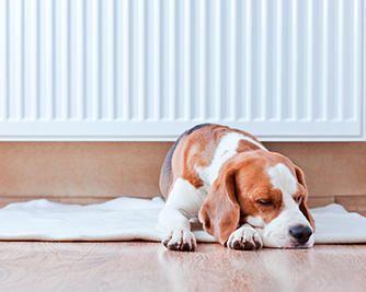 24 tips om gulvvarme