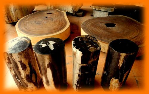 IndoGemstone Petrified Wood Furniture