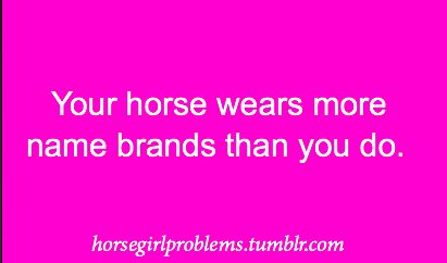 My only name brands are Wrangler, Ariat and Laredo! His are-Tacky Too, Circle Y, AQHA store stuff..you name it!