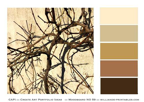 Free Printable Colour Wheel Chart Design Color Mood Board