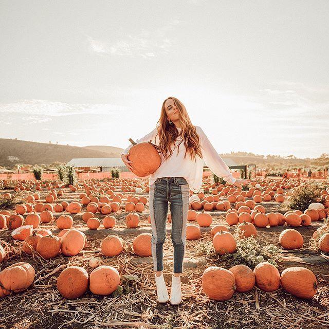 Basicamente, o dia perfeito de outono! Colheita de abóbora, em um laboratório …   – Herbst