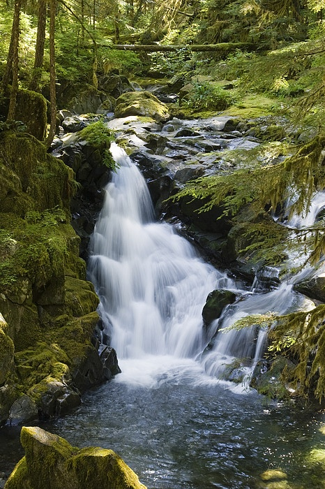 Waterfall of Sol Duc River, Olympic National Park, Washington #mike1242