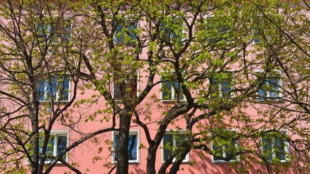 Wissenswertes zum Thema Gemeindewohnungen. #gemeinde #gemeindewohnung #wohnungssuche #wohnung #wien #flat #vienna #wienerwohnen #günstig #wohnen #leichtgemacht #blog