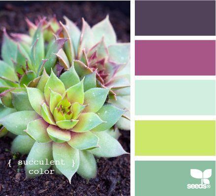 Beautiful Succulent Colors color pallet / カラーパレット 緑 グリーン 紫 パープル 淡い 黄