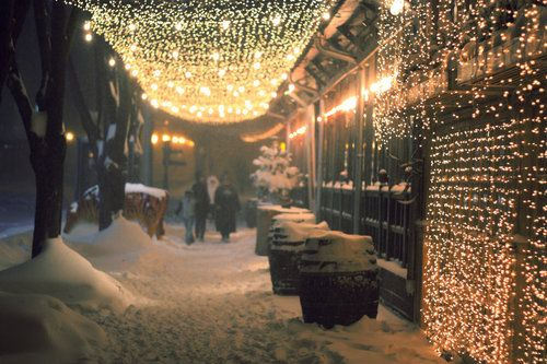 Snow&light: Dreams Home, Twinkle Lights, Night Lights, Fairies Lights, Winter Wonderland, Christmas Lights, Landscape Photography, Holidays Lights
