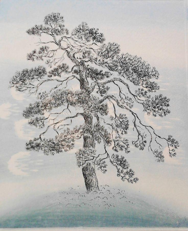 Inari Krohn