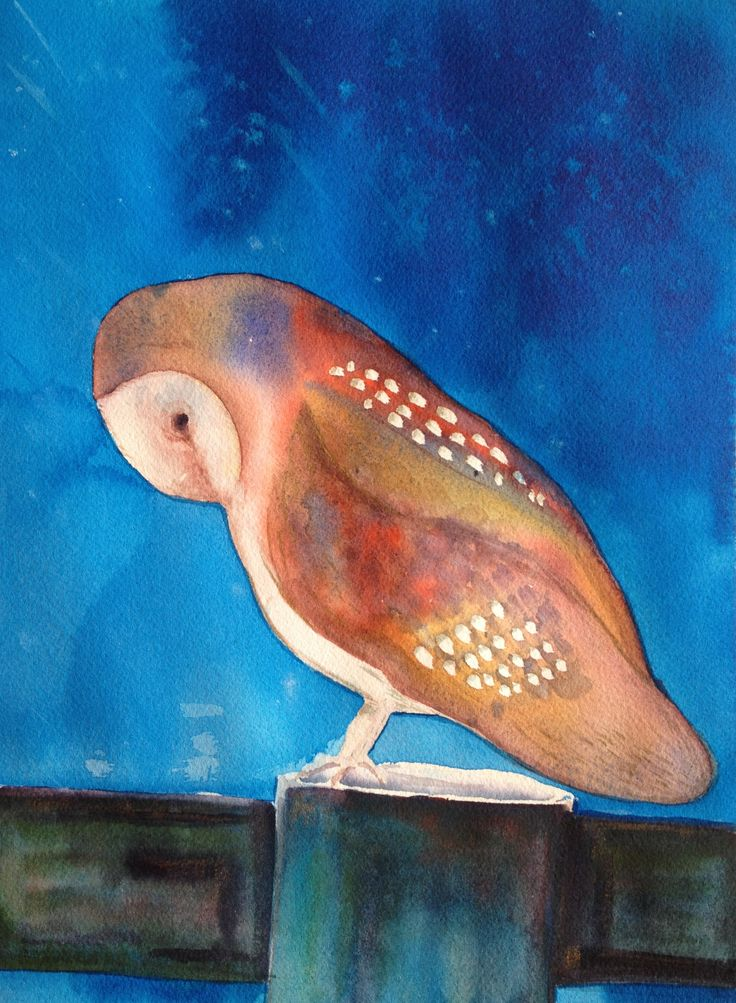 Another owl attempt. Watercolor on paper.